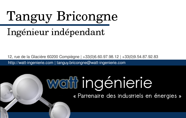 Carte De Visite Tanguy Bricongne